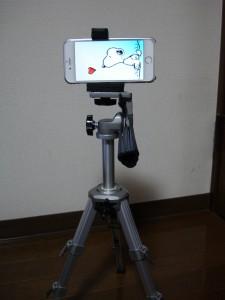 DSC00732